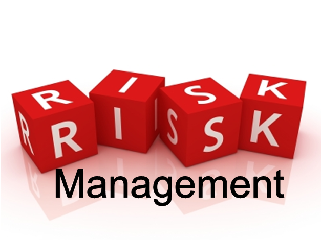 Blog on Risk Management
